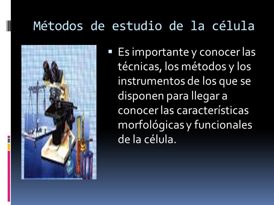Métodos de estudio de la célula