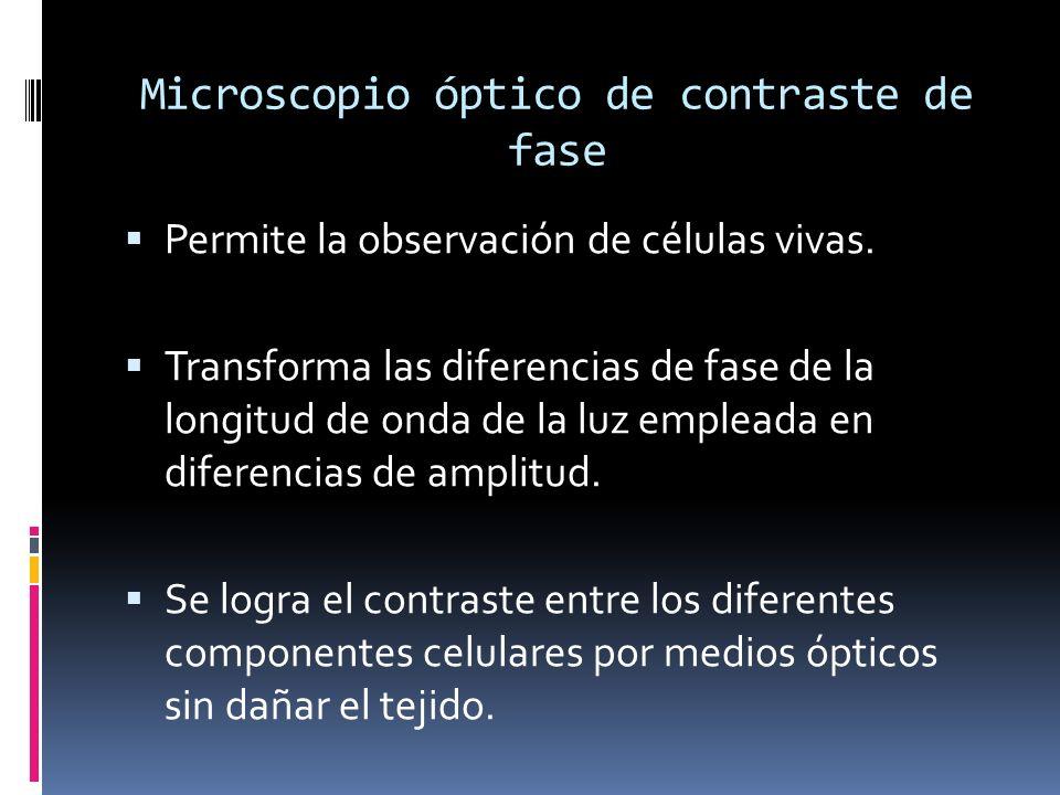Microscopio óptico de contraste de fase