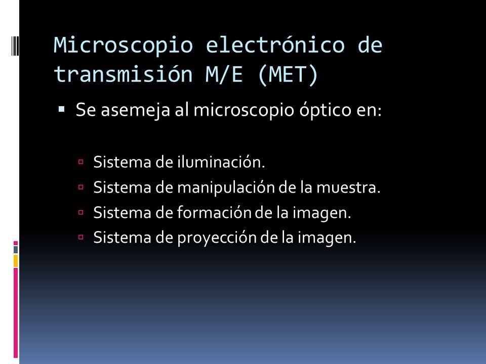 Microscopio electrónico de transmisión M/E (MET)