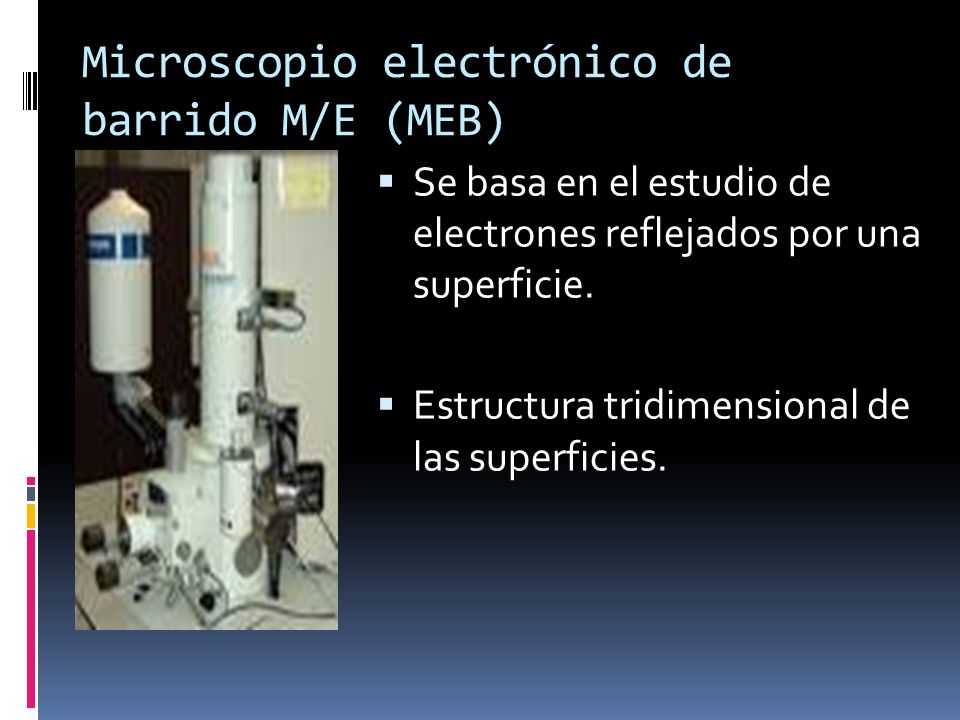 Microscopio electrónico de barrido M/E (MEB)