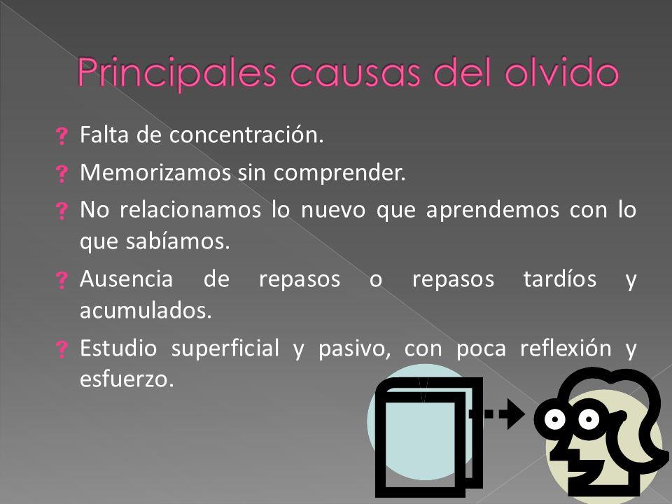 Principales causas del olvido