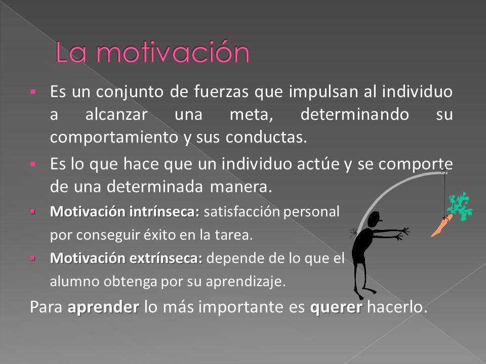 La motivación Es un conjunto de fuerzas que impulsan al individuo a alcanzar una meta, determinando su comportamiento y sus conductas.