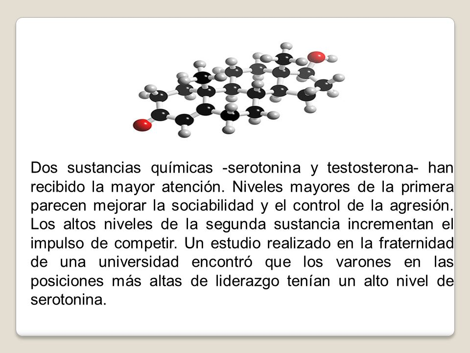 Dos sustancias químicas -serotonina y testosterona- han recibido la mayor atención.
