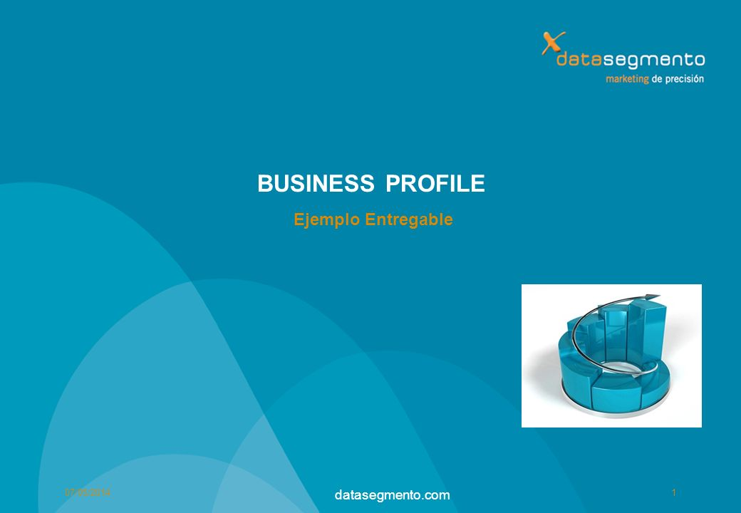 BUSINESS PROFILE Ejemplo Entregable 29/03/2017 datasegmento.com