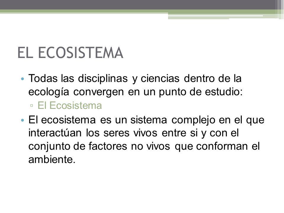 EL ECOSISTEMA Todas las disciplinas y ciencias dentro de la ecología convergen en un punto de estudio: