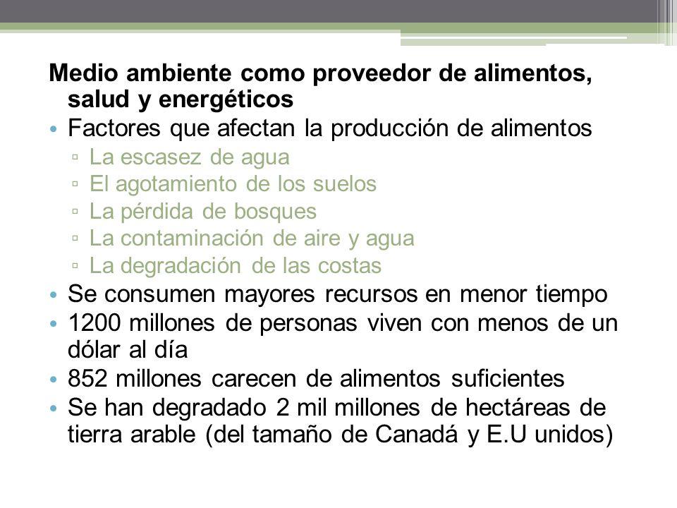 Medio ambiente como proveedor de alimentos, salud y energéticos