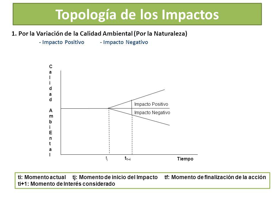 Topología de los Impactos
