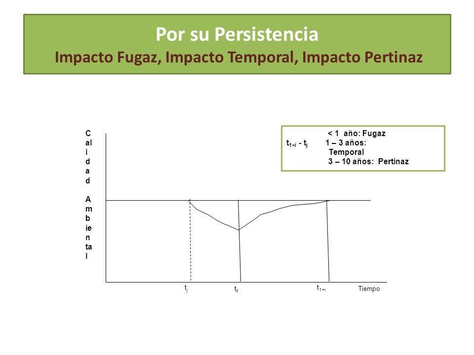 Por su Persistencia Impacto Fugaz, Impacto Temporal, Impacto Pertinaz