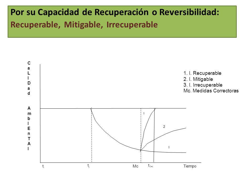 Por su Capacidad de Recuperación o Reversibilidad: