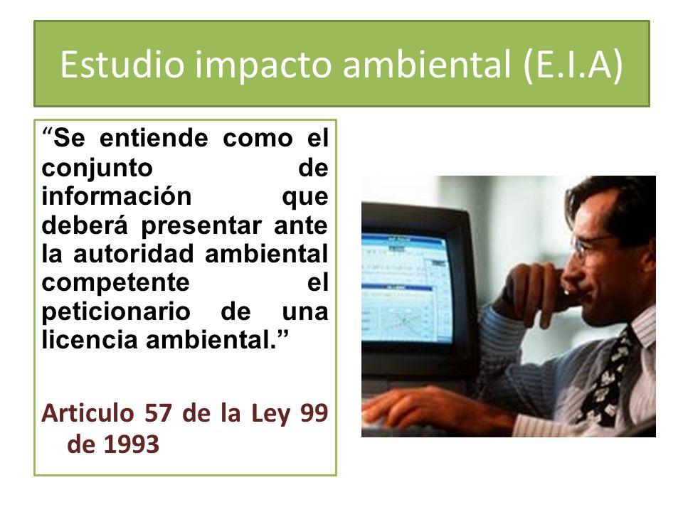 Estudio impacto ambiental (E.I.A)