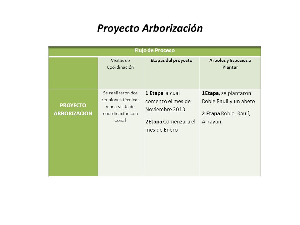 Proyecto Arborización