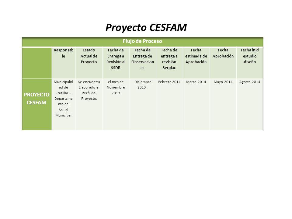 Proyecto CESFAM Flujo de Proceso PROYECTO CESFAM Responsab le