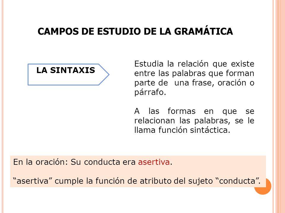 CAMPOS DE ESTUDIO DE LA GRAMÁTICA