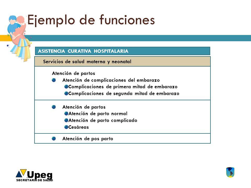 Ejemplo de funciones ASISTENCIA CURATIVA HOSPITALARIA