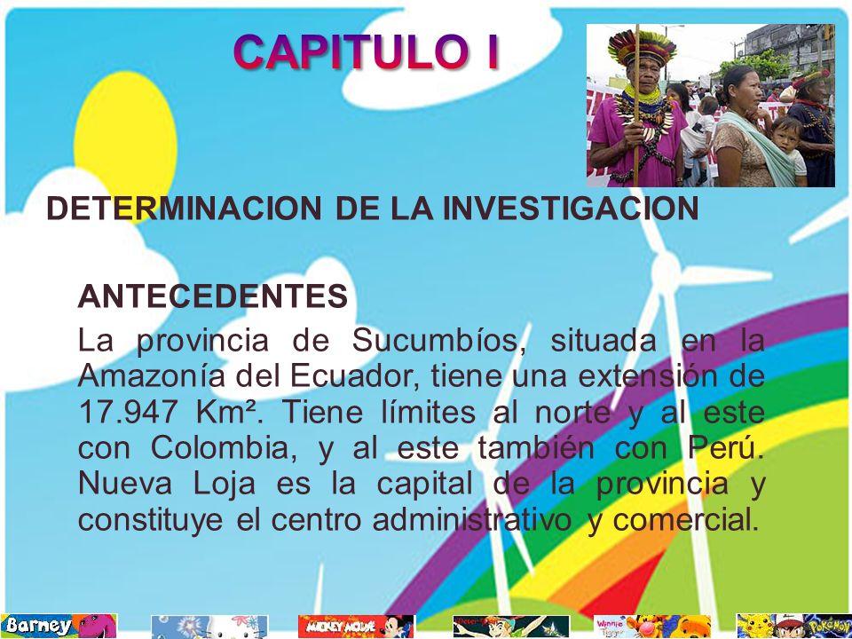 CAPITULO I DETERMINACION DE LA INVESTIGACION ANTECEDENTES