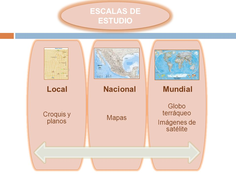 ESCALAS DE ESTUDIO Local Nacional Mundial