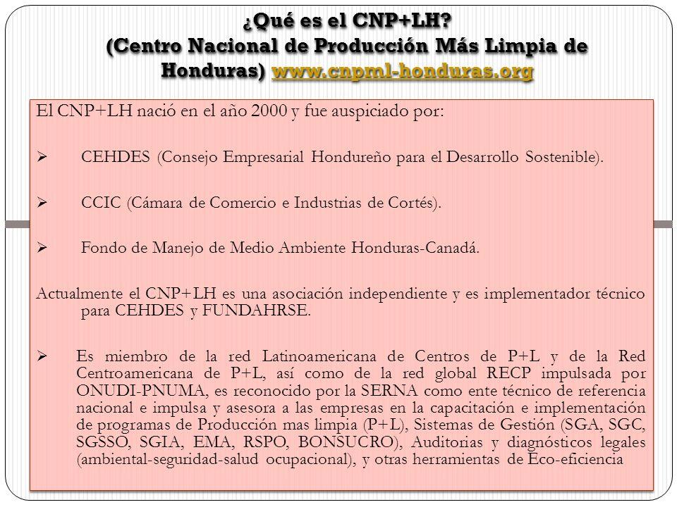 ¿Qué es el CNP+LH (Centro Nacional de Producción Más Limpia de Honduras) www.cnpml-honduras.org.