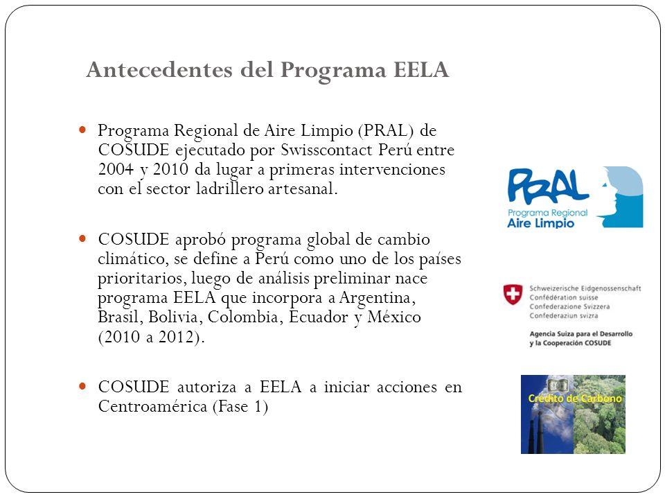 Antecedentes del Programa EELA
