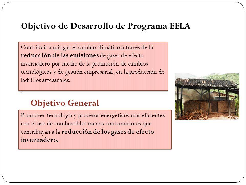 Objetivo de Desarrollo de Programa EELA