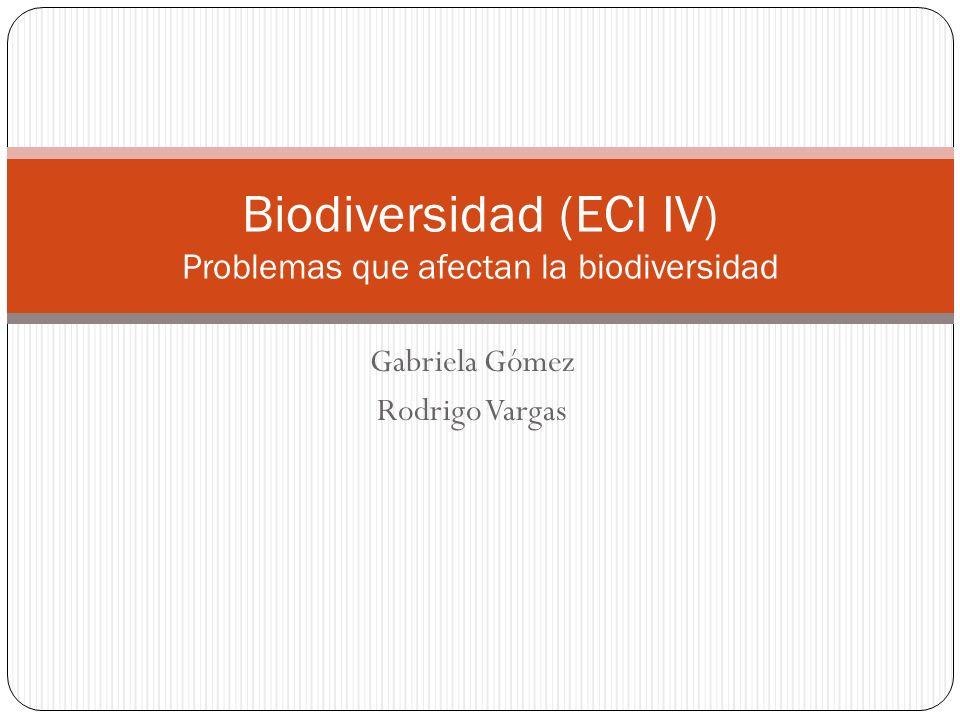 Biodiversidad (ECI IV) Problemas que afectan la biodiversidad