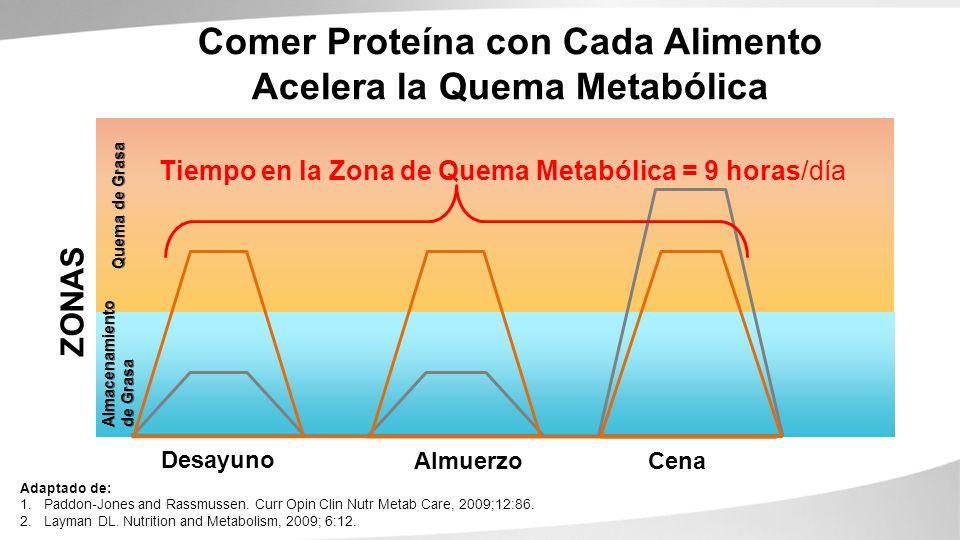Comer Proteína con Cada Alimento Acelera la Quema Metabólica