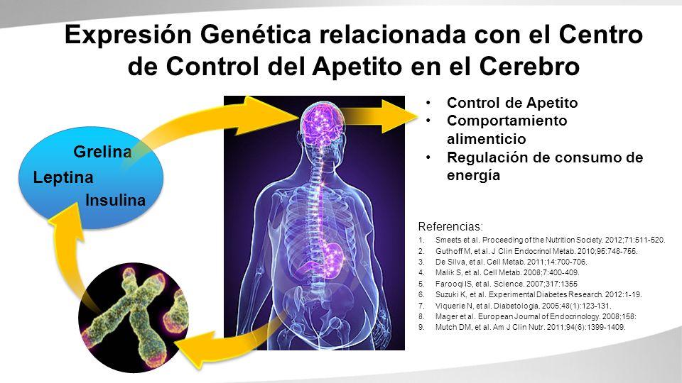 Expresión Genética relacionada con el Centro de Control del Apetito en el Cerebro
