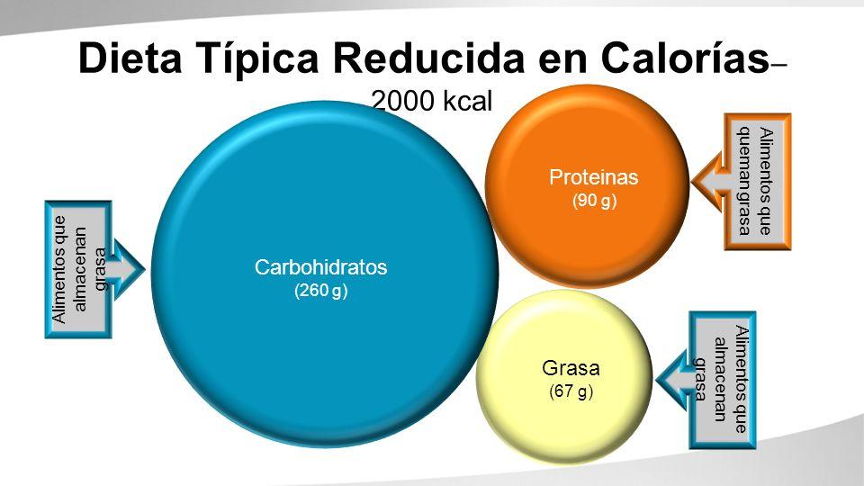 Dieta Típica Reducida en Calorías– 2000 kcal