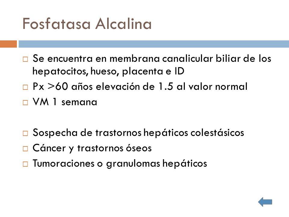Fosfatasa Alcalina Se encuentra en membrana canalicular biliar de los hepatocitos, hueso, placenta e ID.