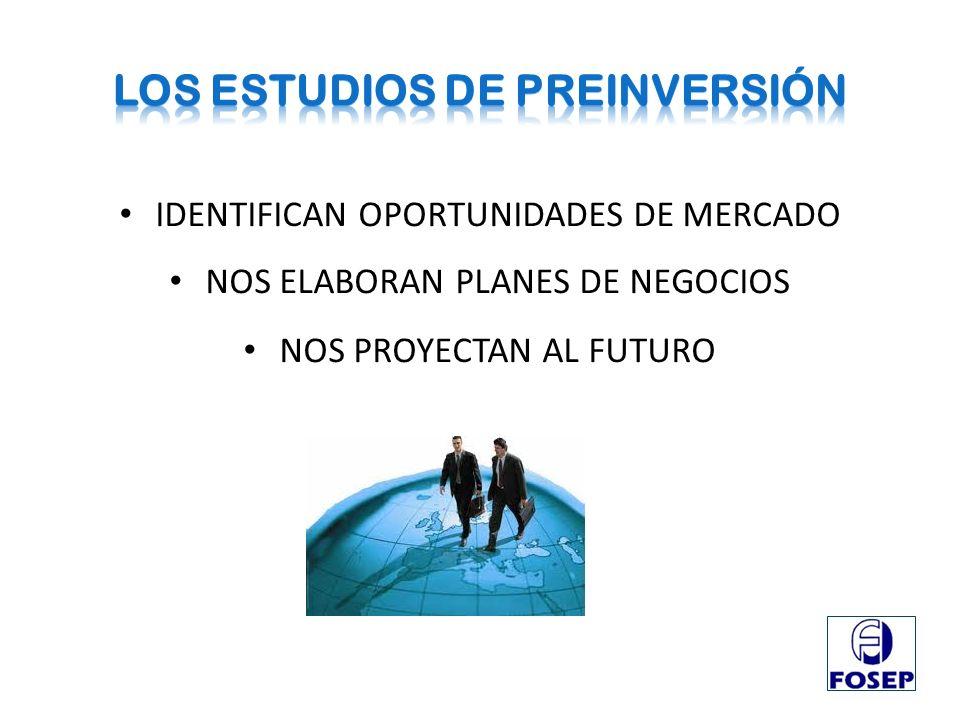 LOS Estudios de preinversión