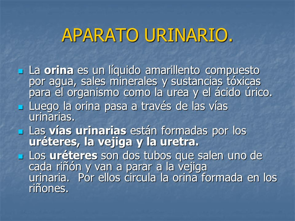 APARATO URINARIO.