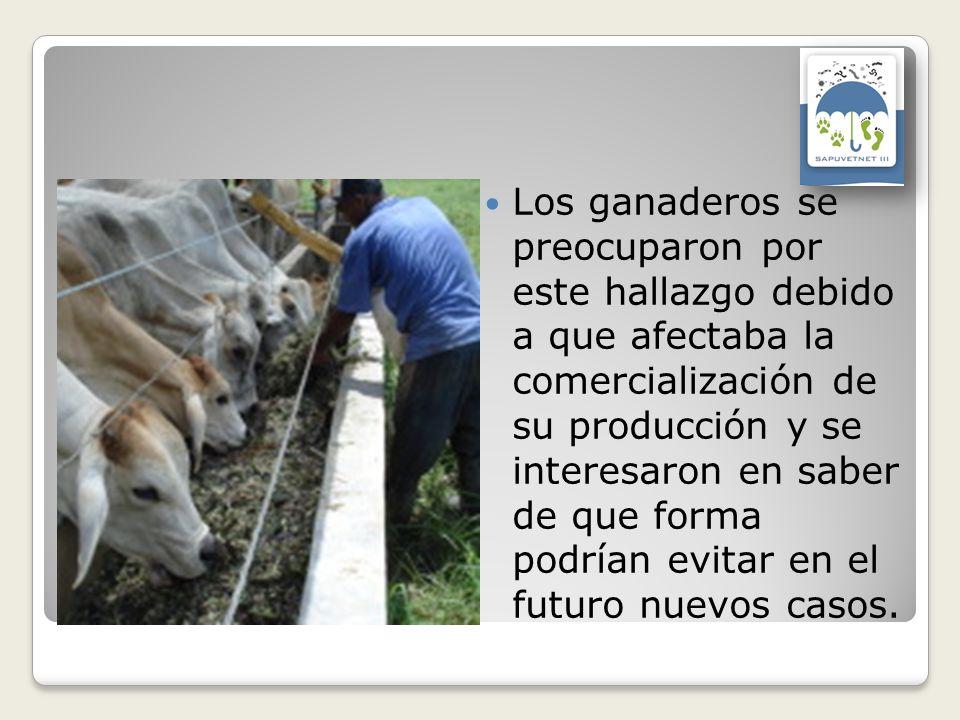 Los ganaderos se preocuparon por este hallazgo debido a que afectaba la comercialización de su producción y se interesaron en saber de que forma podrían evitar en el futuro nuevos casos.