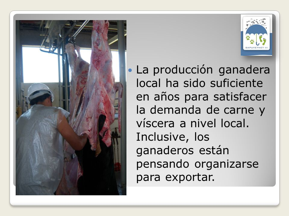 La producción ganadera local ha sido suficiente en años para satisfacer la demanda de carne y víscera a nivel local.