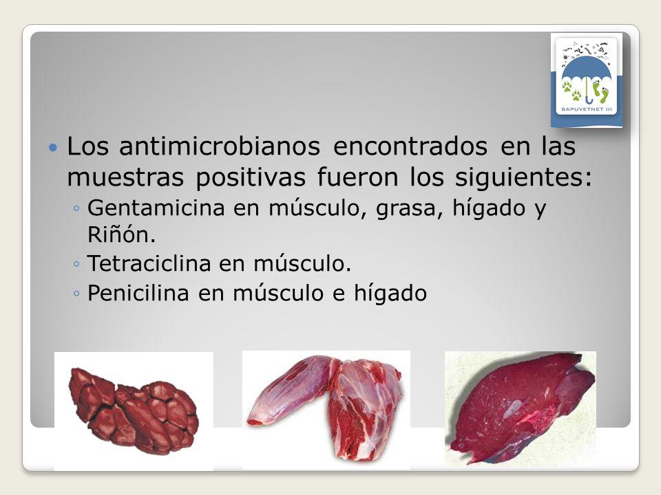 Los antimicrobianos encontrados en las muestras positivas fueron los siguientes: