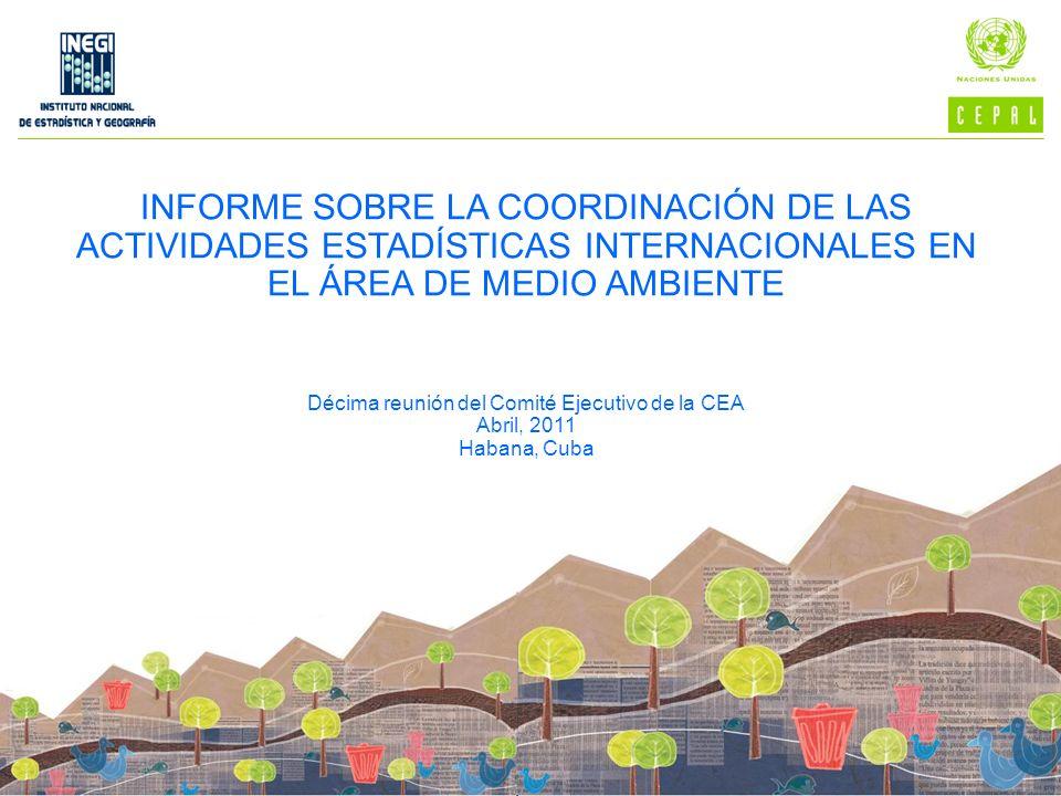 Décima reunión del Comité Ejecutivo de la CEA