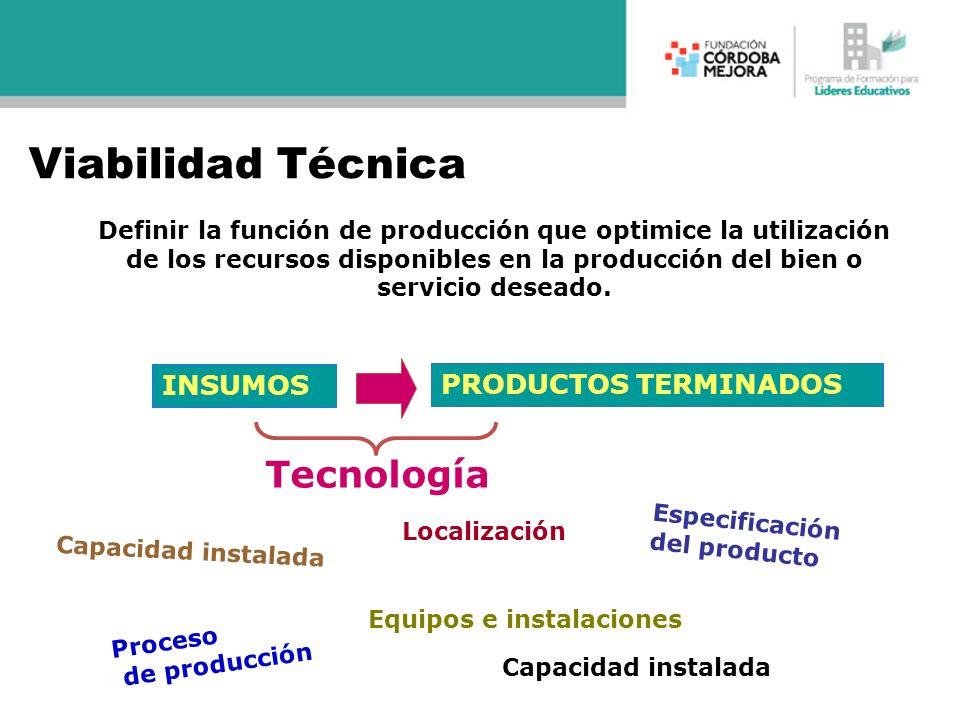 Viabilidad Técnica Tecnología INSUMOS PRODUCTOS TERMINADOS