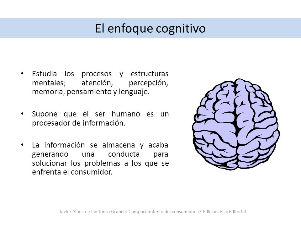 El enfoque cognitivo Estudia los procesos y estructuras mentales; atención, percepción, memoria, pensamiento y lenguaje.