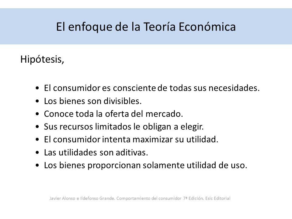 El enfoque de la Teoría Económica