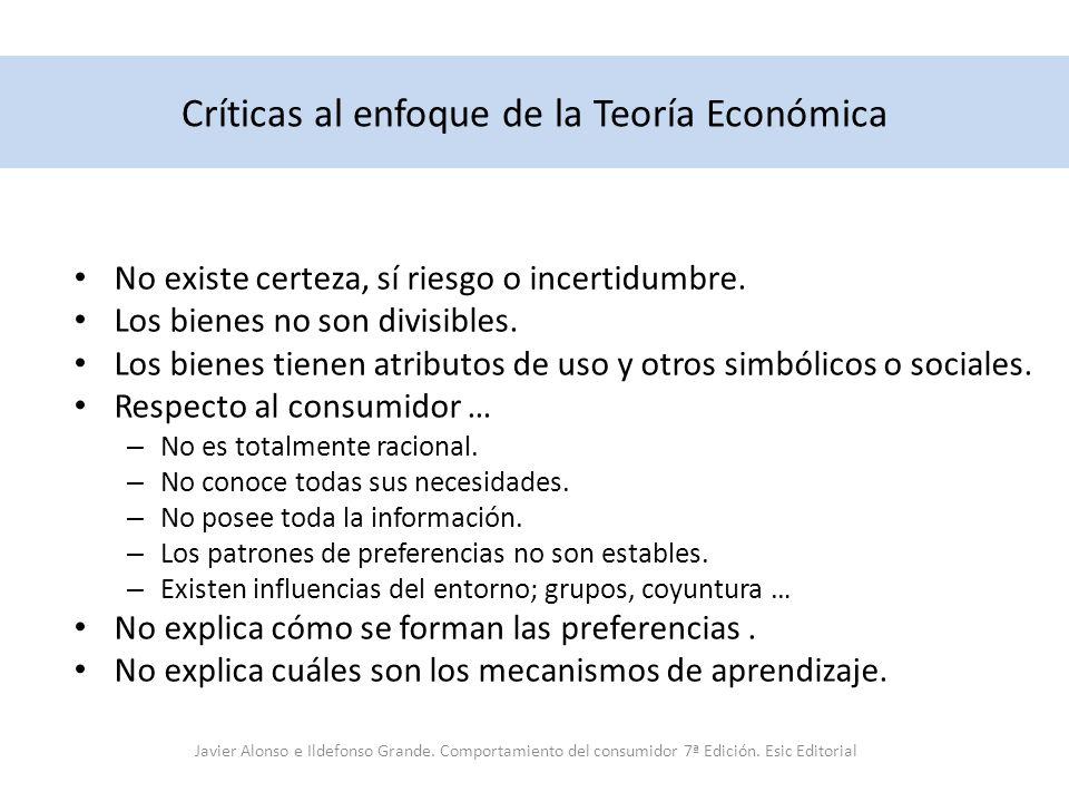 Críticas al enfoque de la Teoría Económica