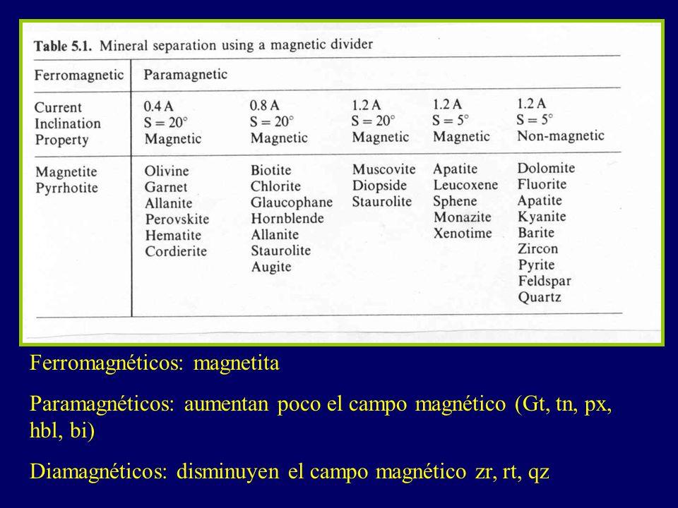 Ferromagnéticos: magnetita