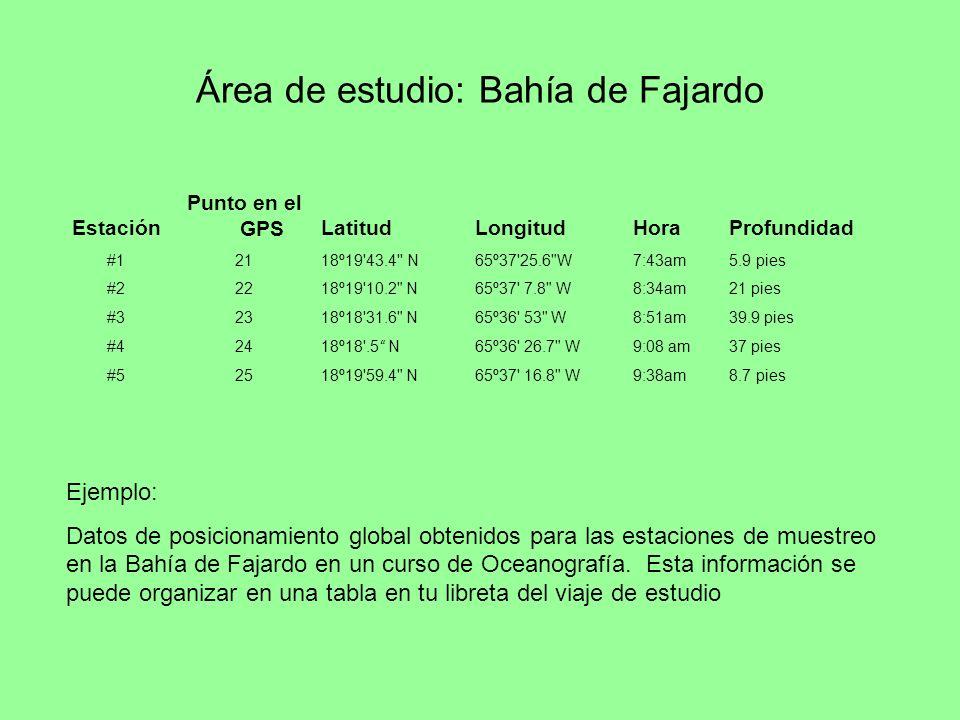 Área de estudio: Bahía de Fajardo