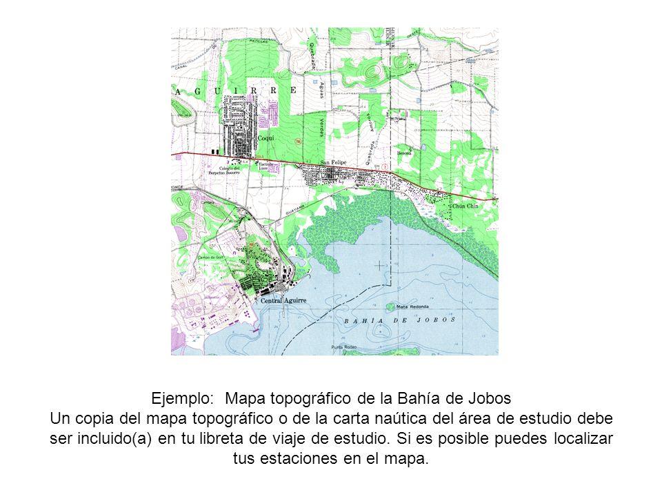 Ejemplo: Mapa topográfico de la Bahía de Jobos Un copia del mapa topográfico o de la carta naútica del área de estudio debe ser incluido(a) en tu libreta de viaje de estudio.