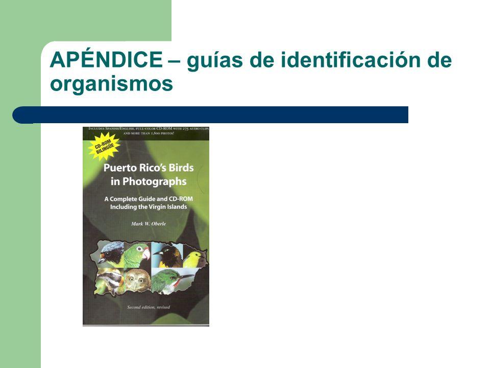 APÉNDICE – guías de identificación de organismos