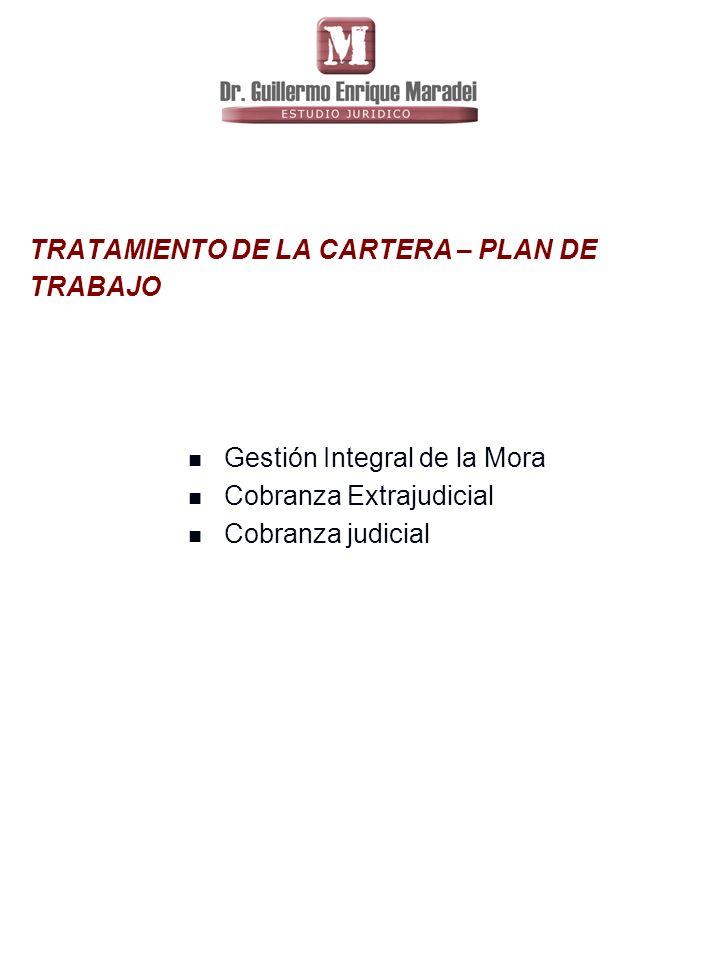 TRATAMIENTO DE LA CARTERA – PLAN DE TRABAJO