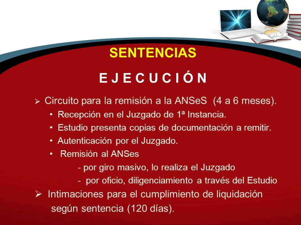 SENTENCIAS E J E C U C I Ó N. Circuito para la remisión a la ANSeS (4 a 6 meses). Recepción en el Juzgado de 1ª Instancia.