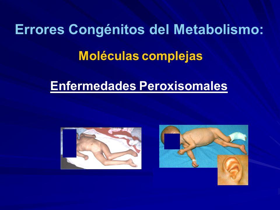 Errores Congénitos del Metabolismo: Enfermedades Peroxisomales