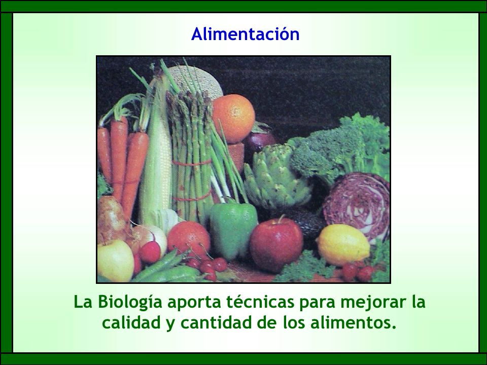 Alimentación La Biología aporta técnicas para mejorar la calidad y cantidad de los alimentos.