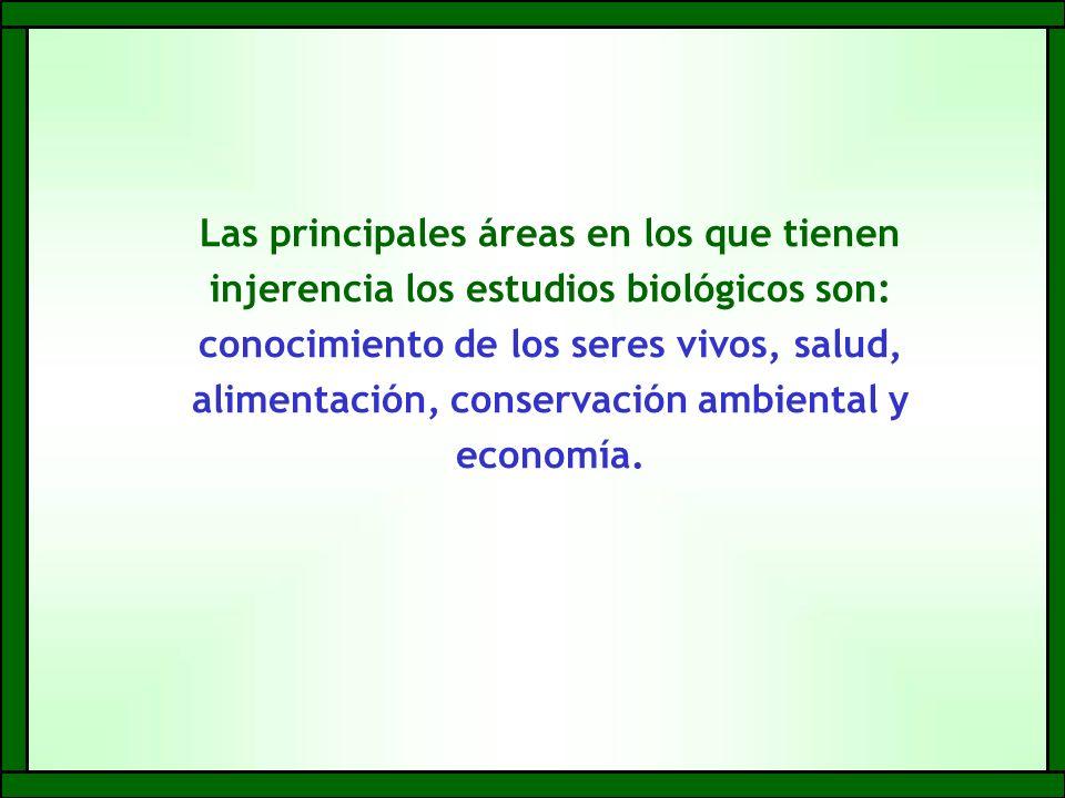Las principales áreas en los que tienen injerencia los estudios biológicos son: conocimiento de los seres vivos, salud, alimentación, conservación ambiental y economía.