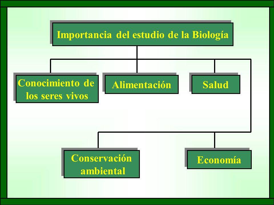 Importancia del estudio de la Biología