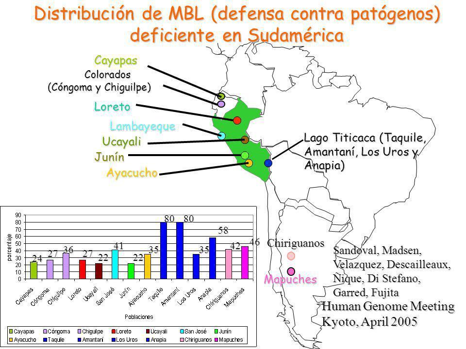 Distribución de MBL (defensa contra patógenos) deficiente en Sudamérica
