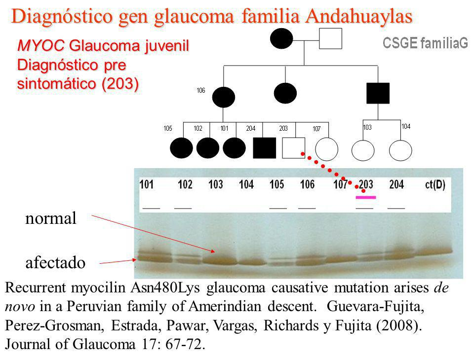 Diagnóstico gen glaucoma familia Andahuaylas
